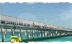 broomejetty1