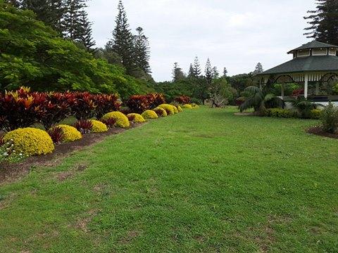queenvic-garden