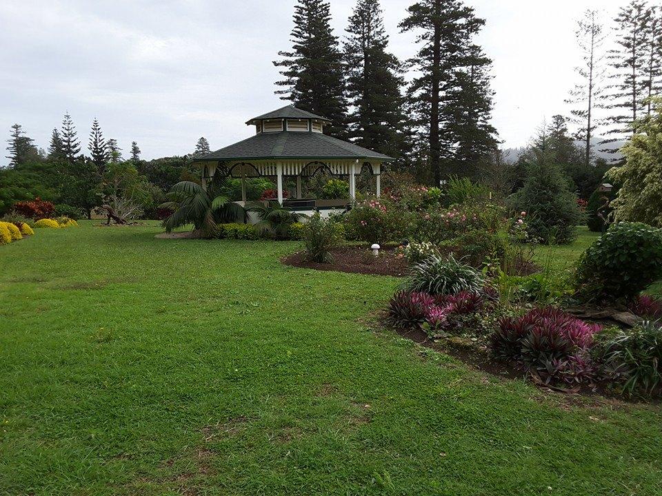 queenvic-garden2